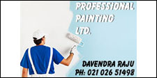 Professional Painting Ltd